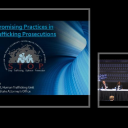 FSU CAHR Emerging Promising Practices in the Anti-Trafficking Field Conference